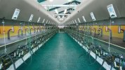 GEA - Conventional Milking Farm